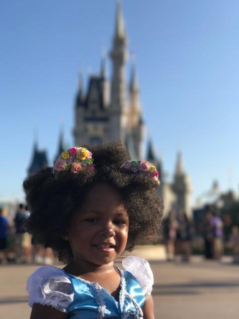 Dining with a Disney Princess